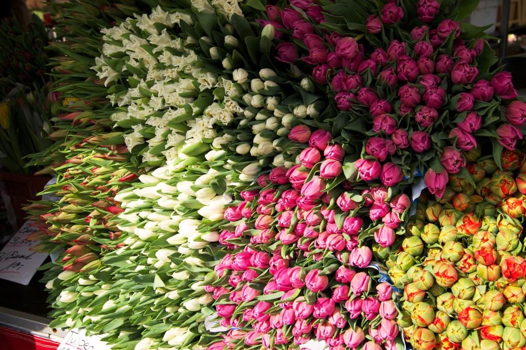 Blumen vom Markt