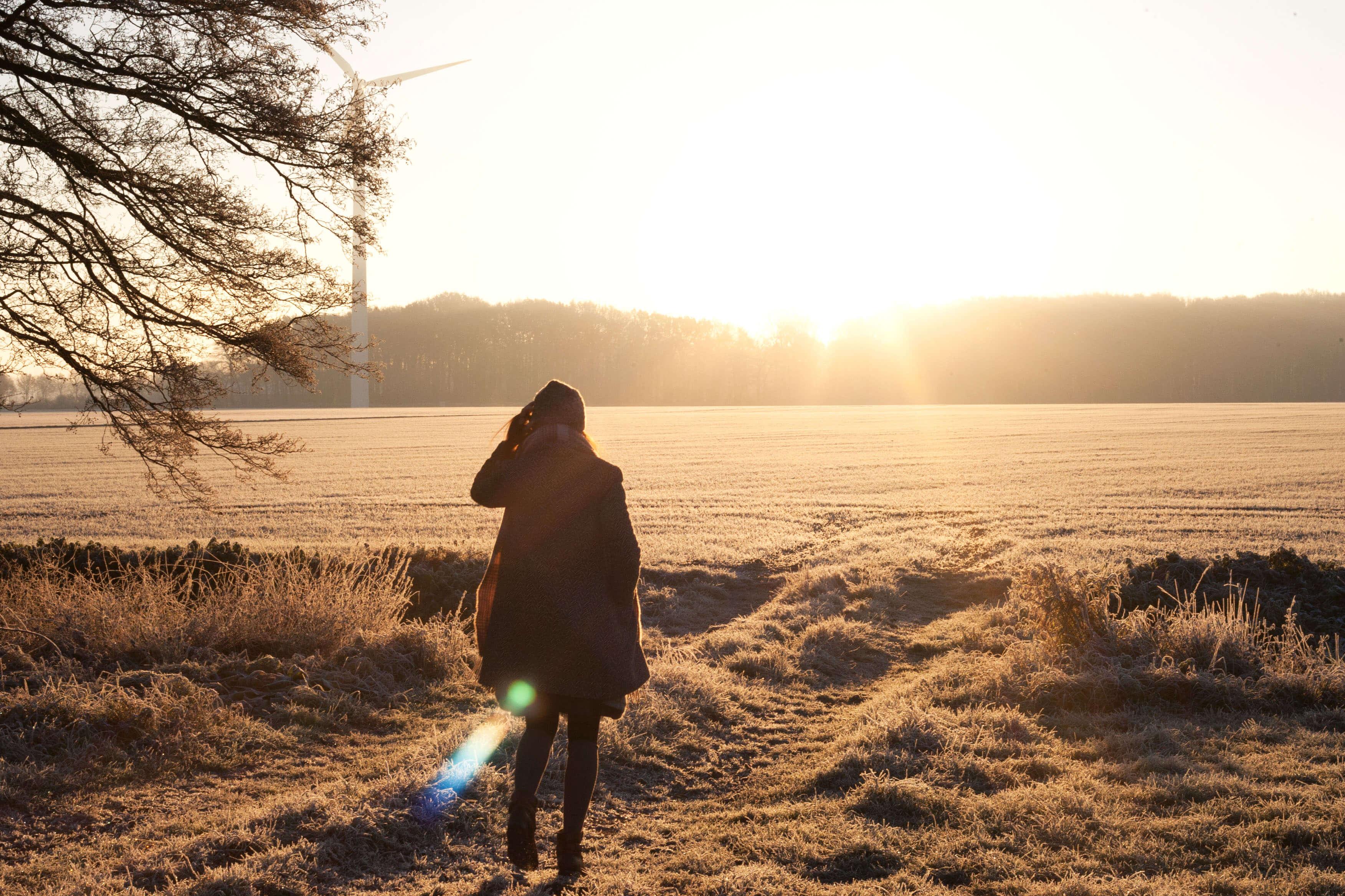 Hobo Schuh Shooting Wintermorgen Pferdewiese